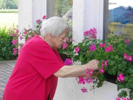 spaziergang-pflegeheim